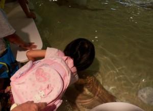 魚を触る子